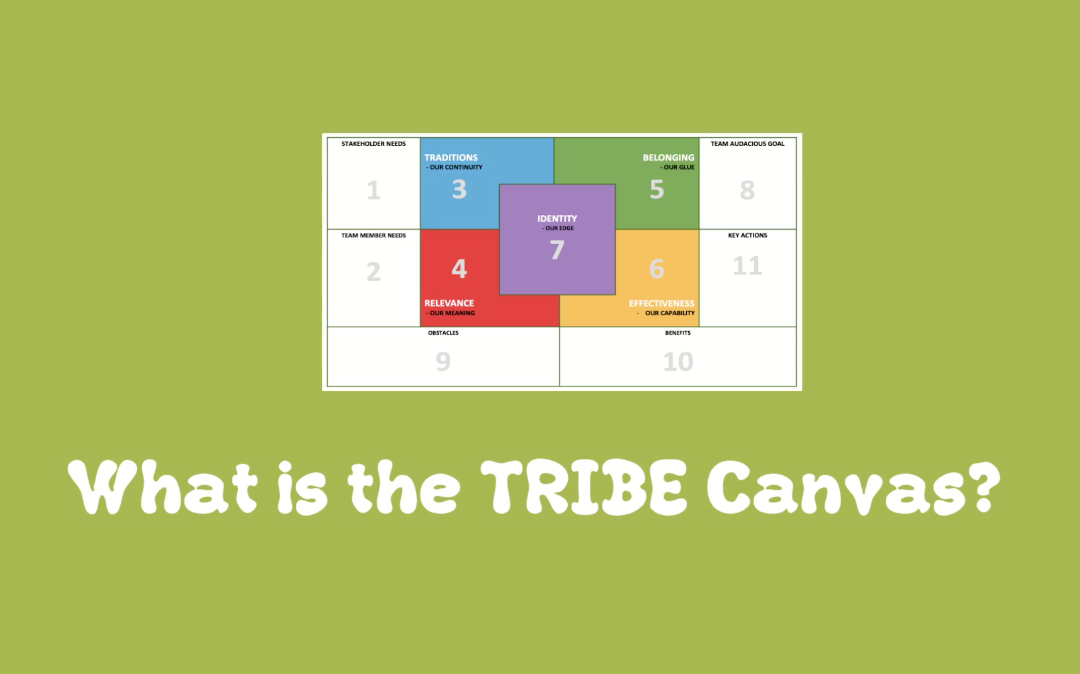 Lesson 4: What is the TRIBE Canvas?